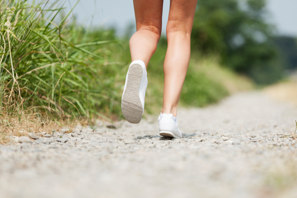 endurance sport nutrition